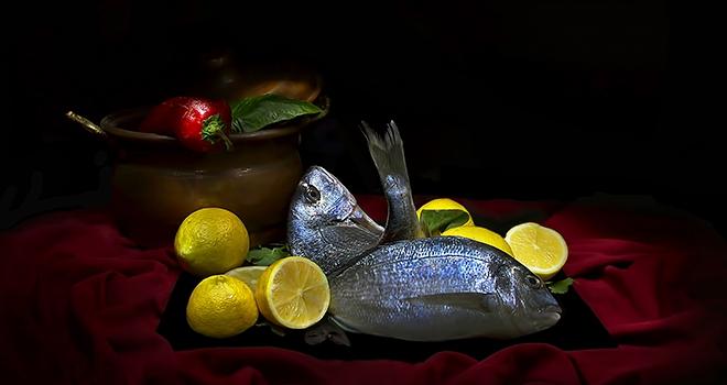 Balıklar Oltaya Değil Objektiflere Takıldı