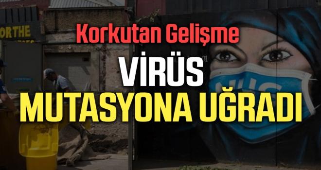 Korkutan Gelişme: Virüs Mutasyona Uğradı