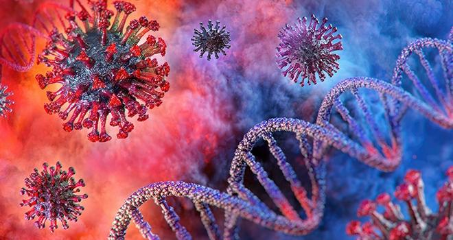 Farkında Olmadan Koronavirüs Geçirip Geçirmediğinizi Test Yaptırarak Öğrenebilirsiniz
