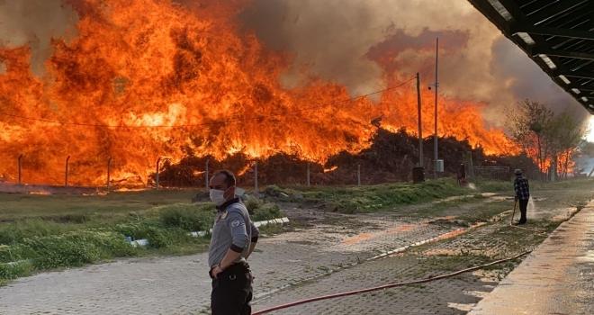 OKE'den Çay BES'teki Yangınla İlgili Açıklama