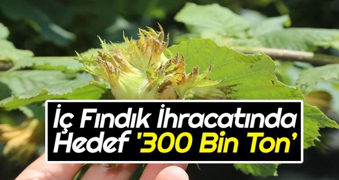 İç Fındık İhracatında Hedef '300 Bin Ton'