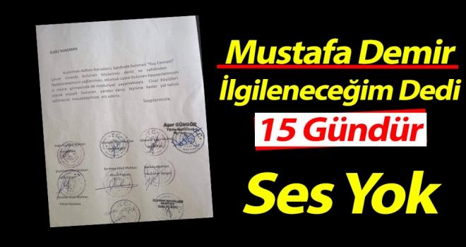 Mustafa Demir; İlgileneceğim Dedi, 15 Gündür Ses Yok