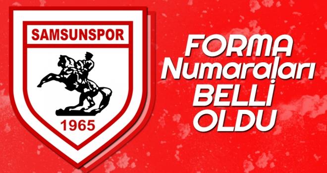 Samsunspor'da Bu Sezon Futbolcuların Giyeceği Forma Numaraları Belli Oldu!