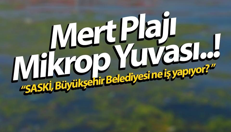 Samsun Mert Plajı Mikrop Yuvası..!