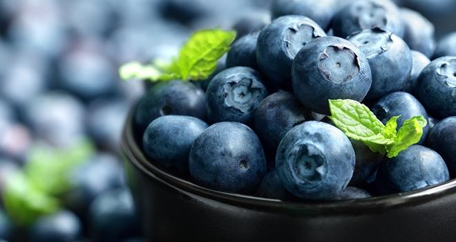 Mavi Mor Renkli 5 Yaz Meyvesi